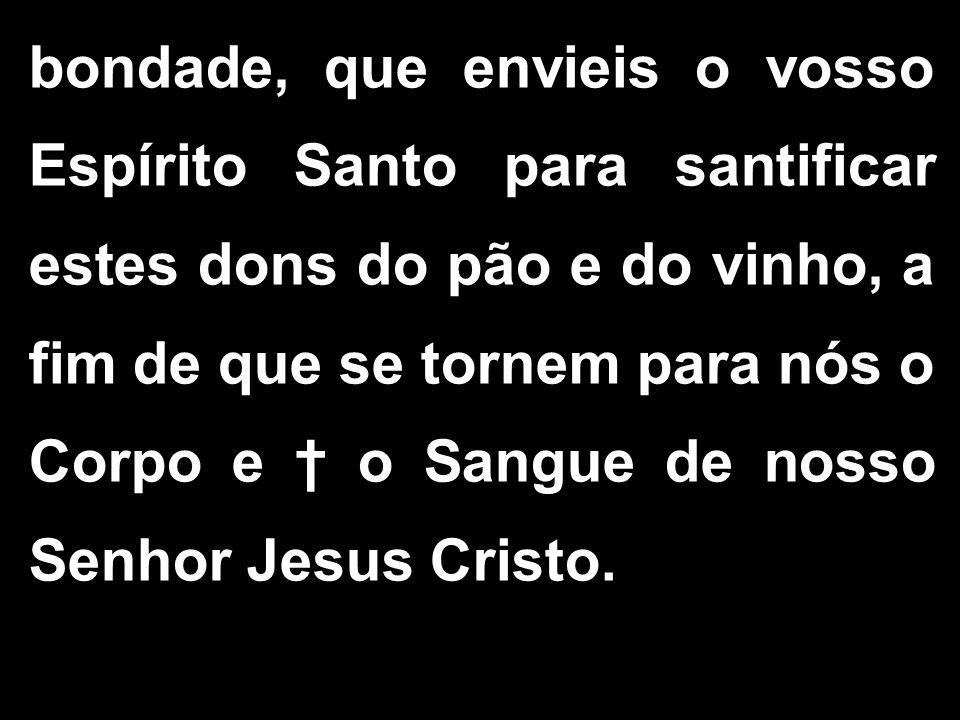 bondade, que envieis o vosso Espírito Santo para santificar estes dons do pão e do vinho, a fim de que se tornem para nós o Corpo e † o Sangue de nosso Senhor Jesus Cristo.