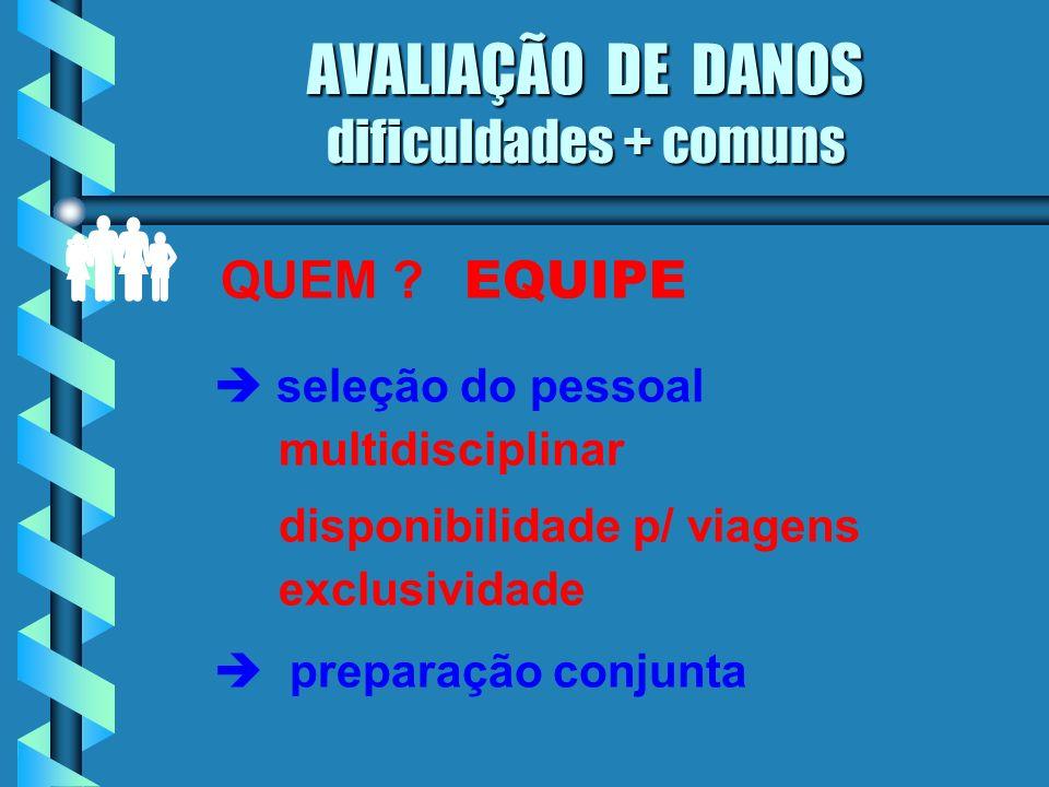 AVALIAÇÃO DE DANOS dificuldades + comuns
