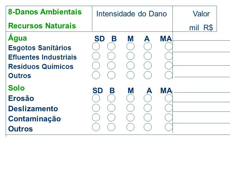 8-Danos Ambientais Recursos Naturais Intensidade do Dano Valor mil R$