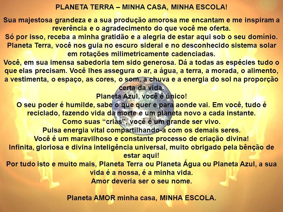 PLANETA TERRA – MINHA CASA, MINHA ESCOLA!