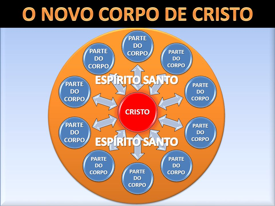 O NOVO CORPO DE CRISTO ESPÍRITO SANTO ESPÍRITO SANTO PARTE DO CORPO