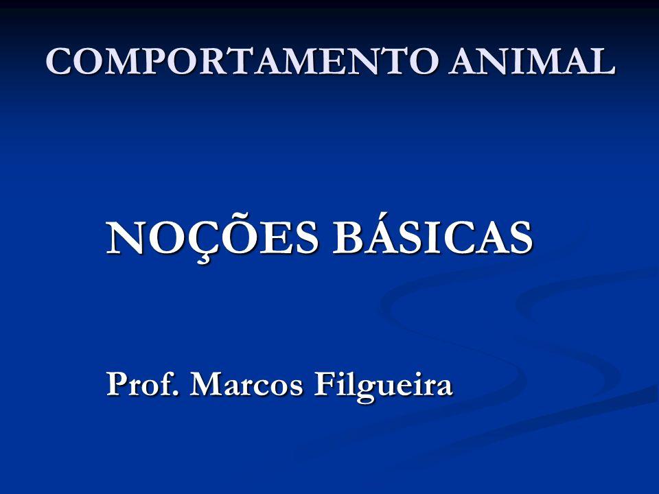 COMPORTAMENTO ANIMAL NOÇÕES BÁSICAS Prof. Marcos Filgueira