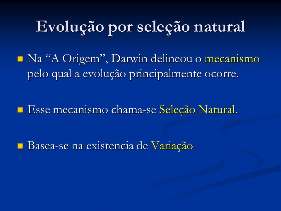 Evolução por seleção natural