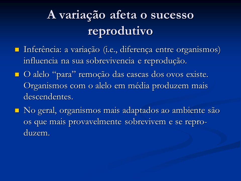 A variação afeta o sucesso reprodutivo
