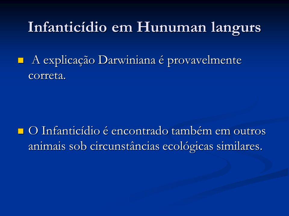 Infanticídio em Hunuman langurs