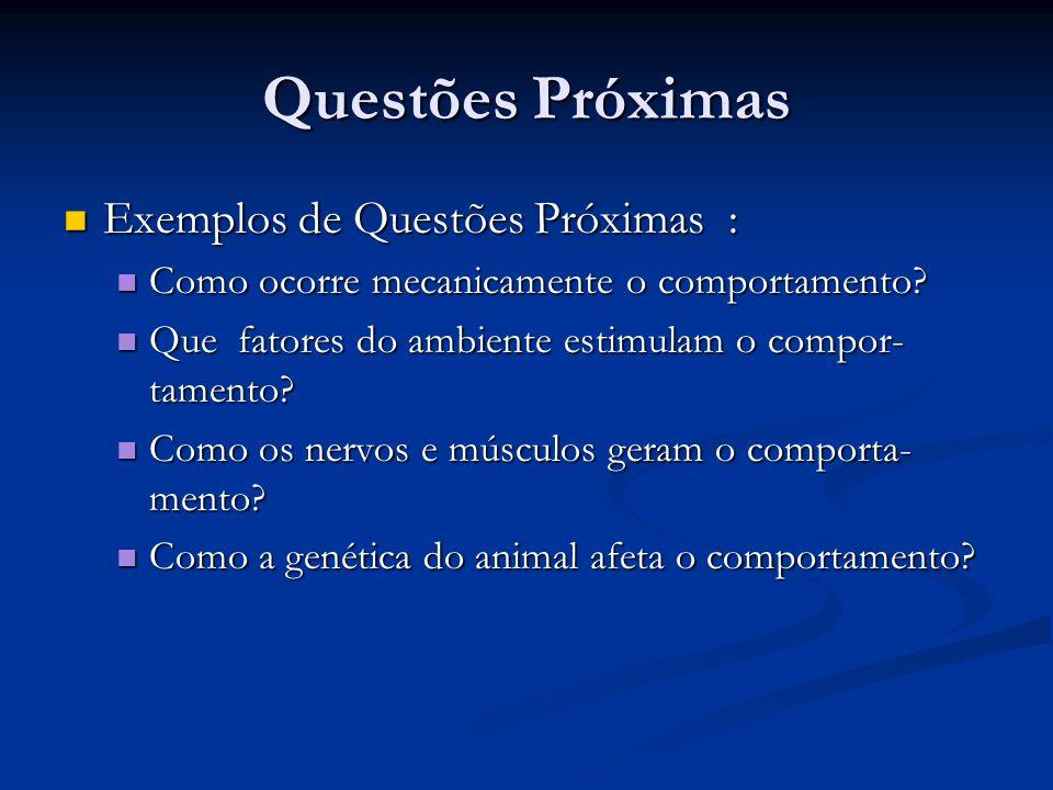 Questões Próximas Exemplos de Questões Próximas :