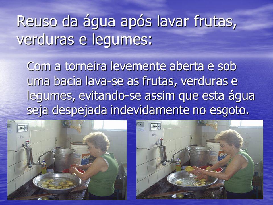 Reuso da água após lavar frutas, verduras e legumes:
