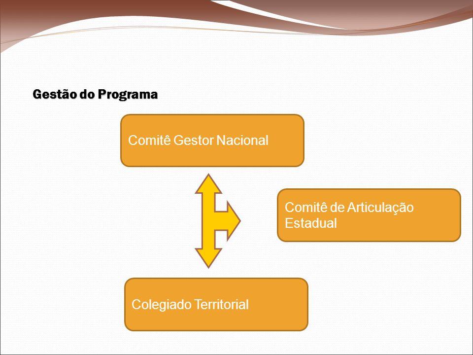 Gestão do Programa Comitê Gestor Nacional