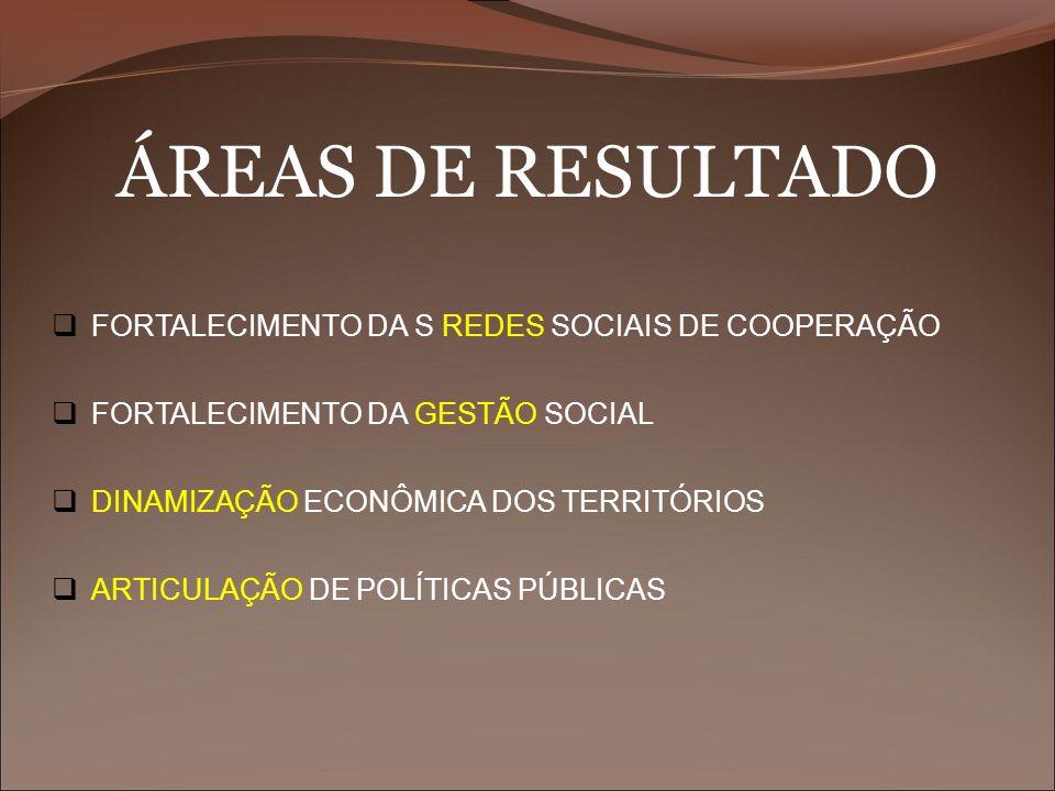 ÁREAS DE RESULTADO FORTALECIMENTO DA S REDES SOCIAIS DE COOPERAÇÃO