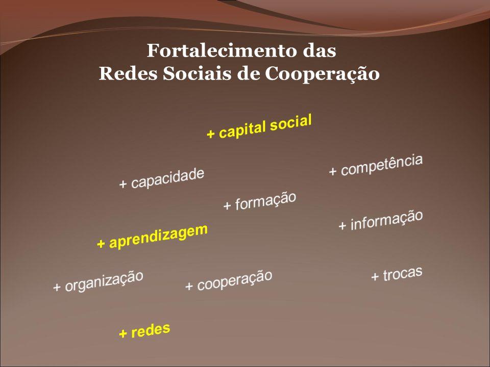 Redes Sociais de Cooperação