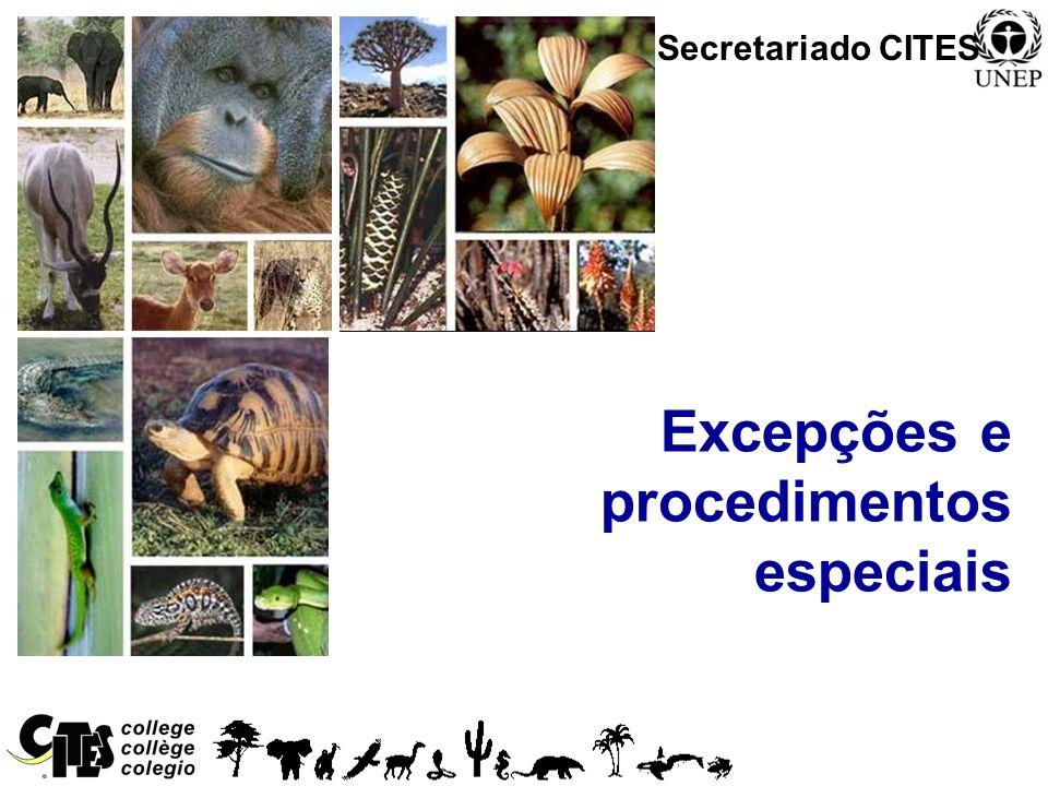 Excepções e procedimentos especiais