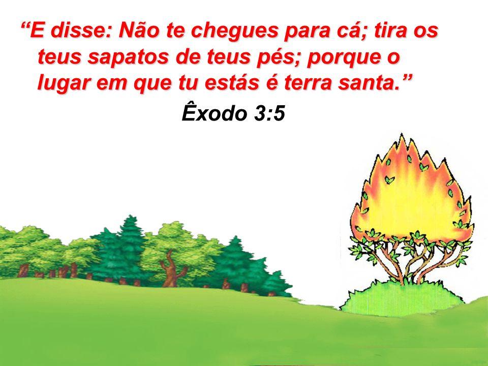 E disse: Não te chegues para cá; tira os teus sapatos de teus pés; porque o lugar em que tu estás é terra santa.