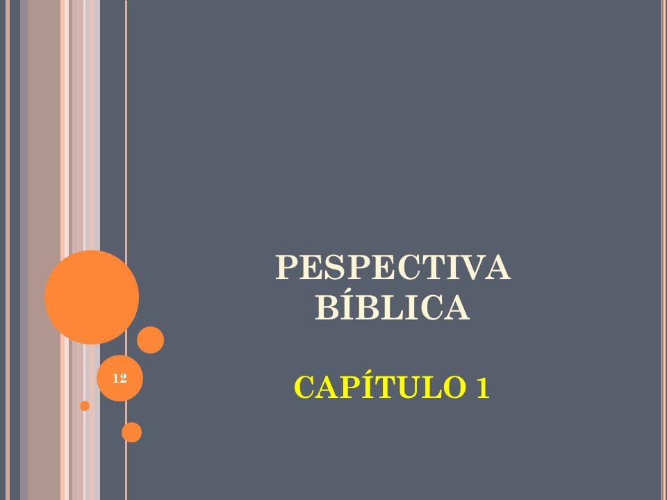 PESPECTIVA BÍBLICA CAPÍTULO 1