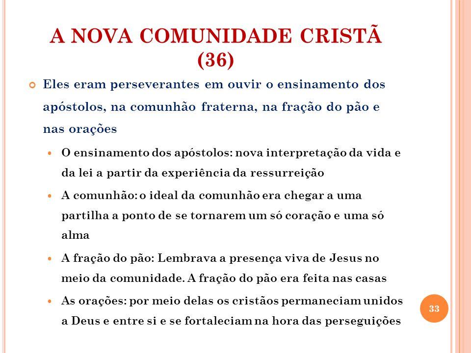 A NOVA COMUNIDADE CRISTÃ (36)