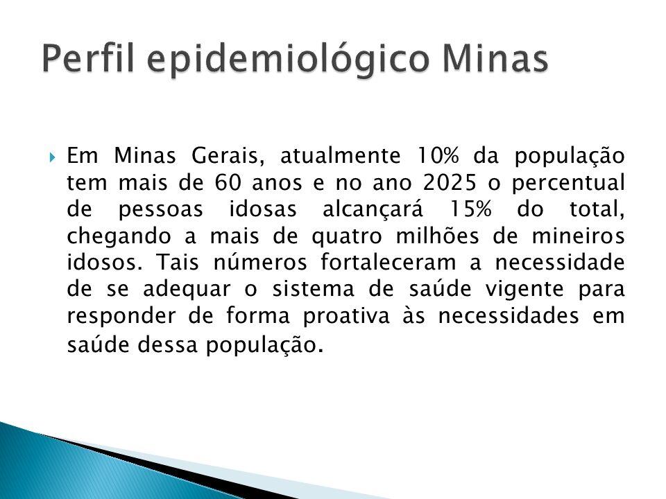 Perfil epidemiológico Minas