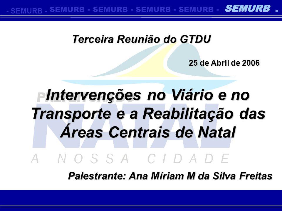 Terceira Reunião do GTDU Palestrante: Ana Míriam M da Silva Freitas