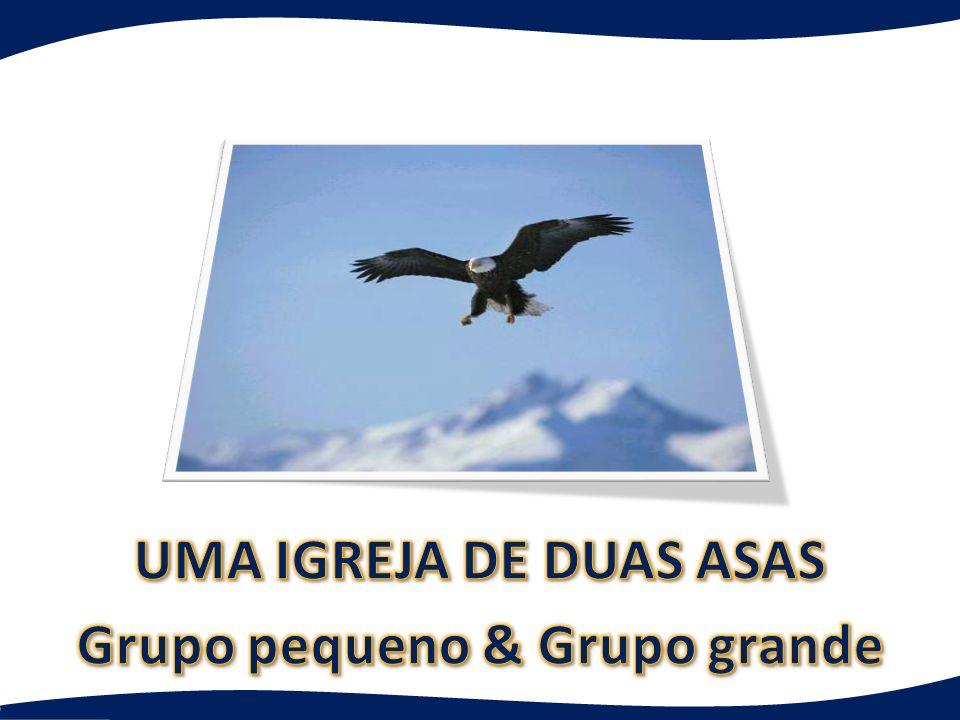 UMA IGREJA DE DUAS ASAS Grupo pequeno & Grupo grande