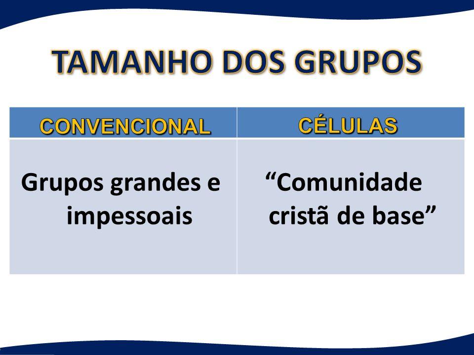 Grupos grandes e impessoais Comunidade cristã de base