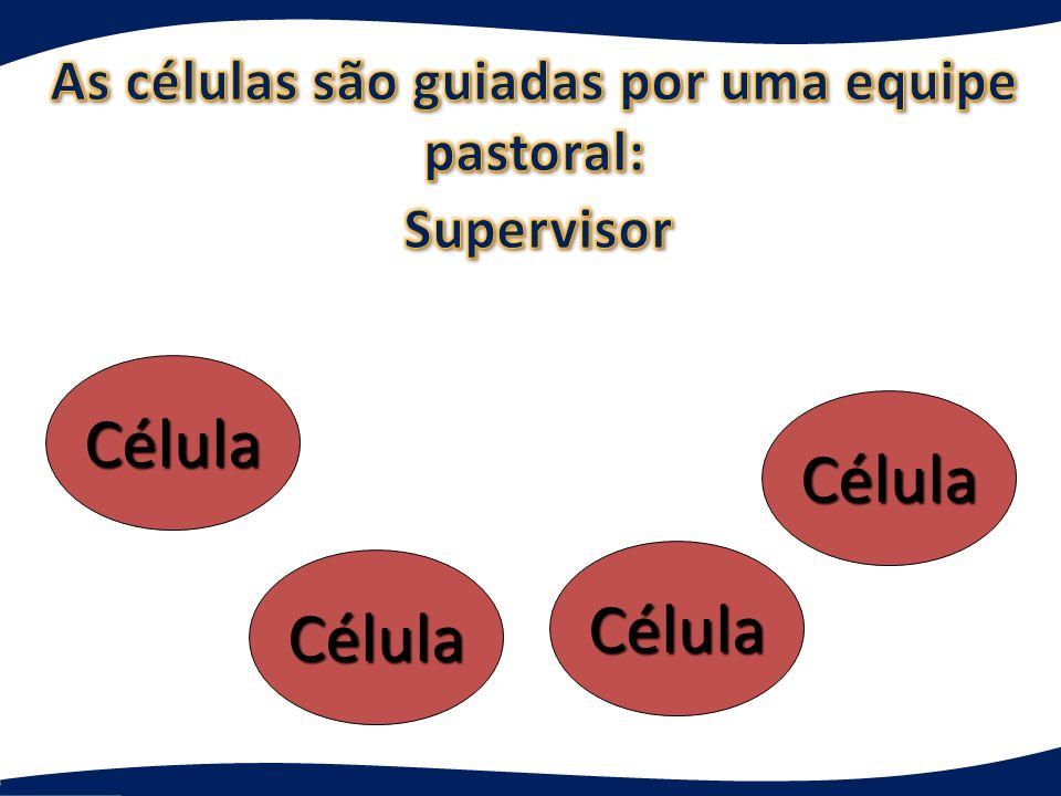 As células são guiadas por uma equipe pastoral: