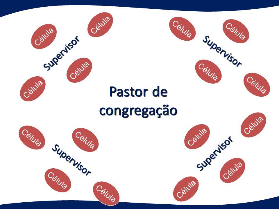 Pastor de congregação Supervisor Supervisor Supervisor Supervisor