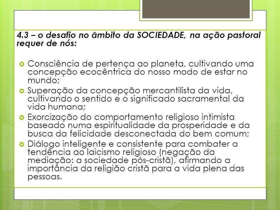 4.3 – o desafio no âmbito da SOCIEDADE, na ação pastoral requer de nós: