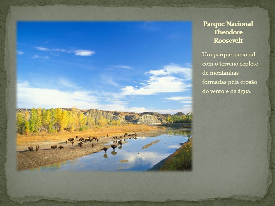 Parque Nacional Theodore Roosevelt