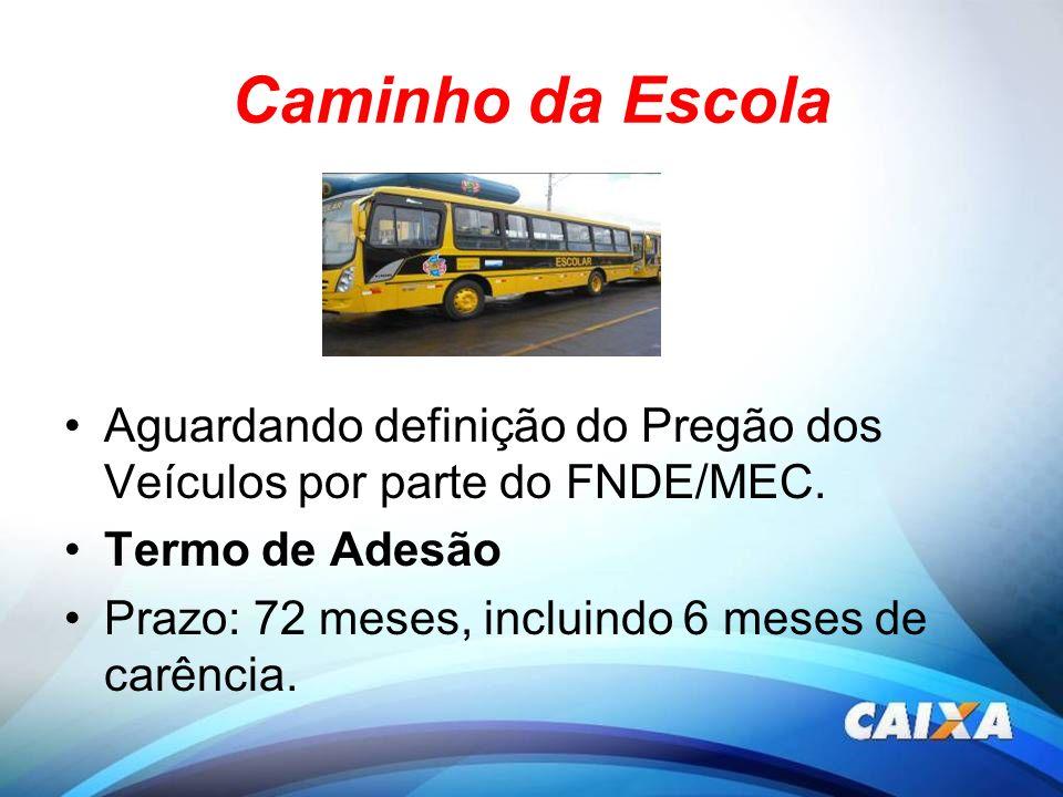 Caminho da Escola Aguardando definição do Pregão dos Veículos por parte do FNDE/MEC. Termo de Adesão.