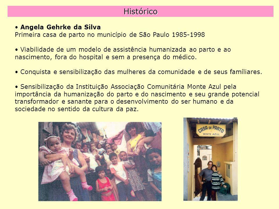 Histórico Angela Gehrke da Silva