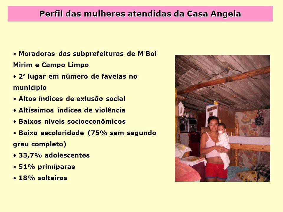 Perfil das mulheres atendidas da Casa Angela