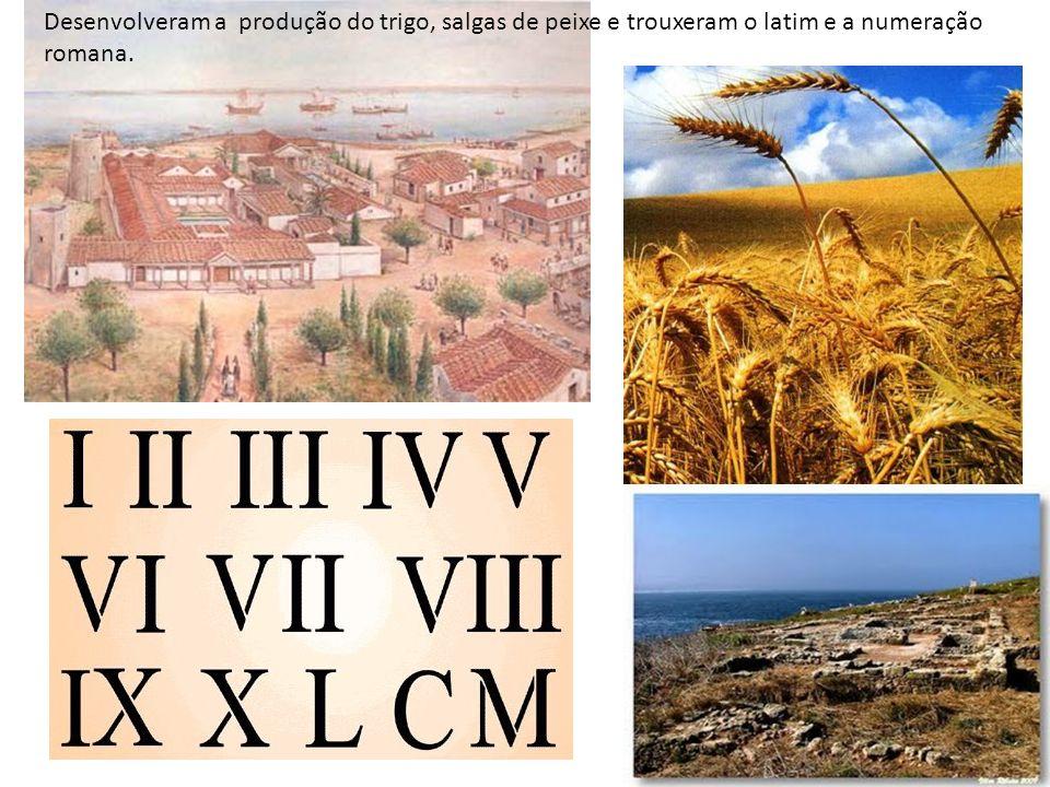 Desenvolveram a produção do trigo, salgas de peixe e trouxeram o latim e a numeração romana.