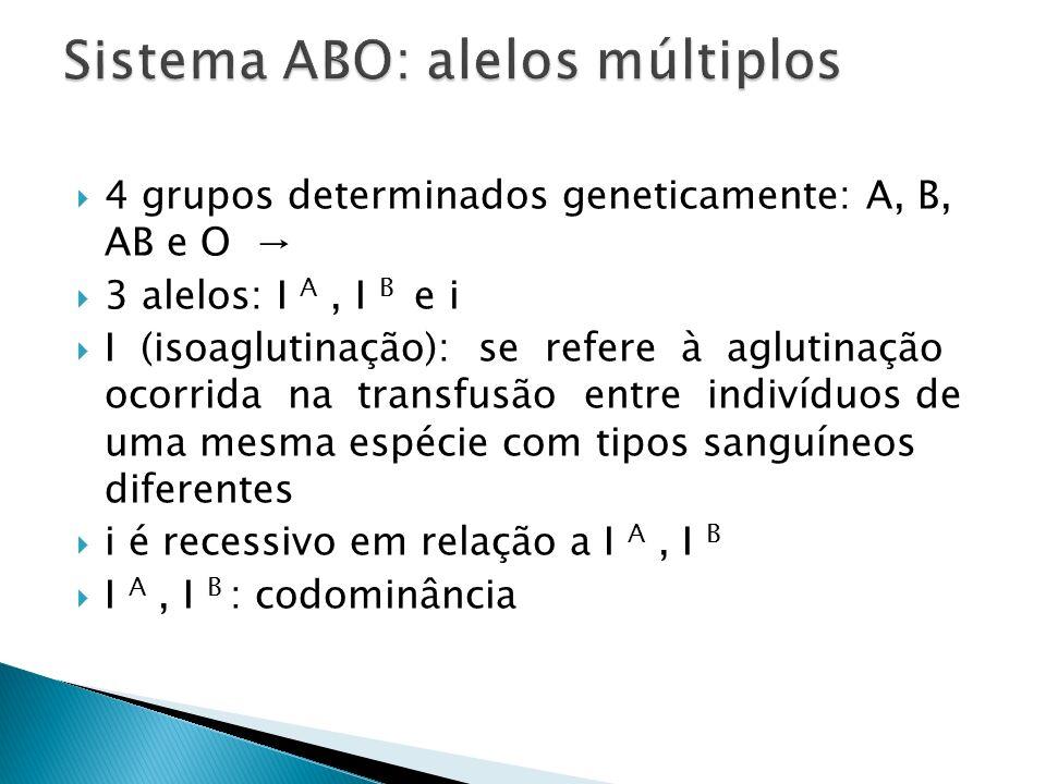 Sistema ABO: alelos múltiplos