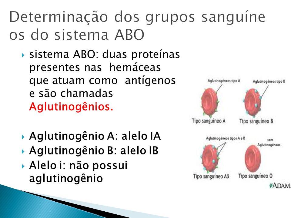 Determinação dos grupos sanguíneos do sistema ABO