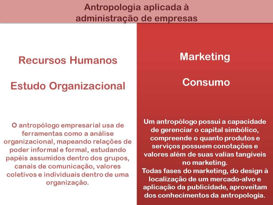 Estudo Organizacional Marketing Consumo