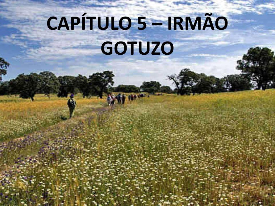 CAPÍTULO 5 – IRMÃO GOTUZO