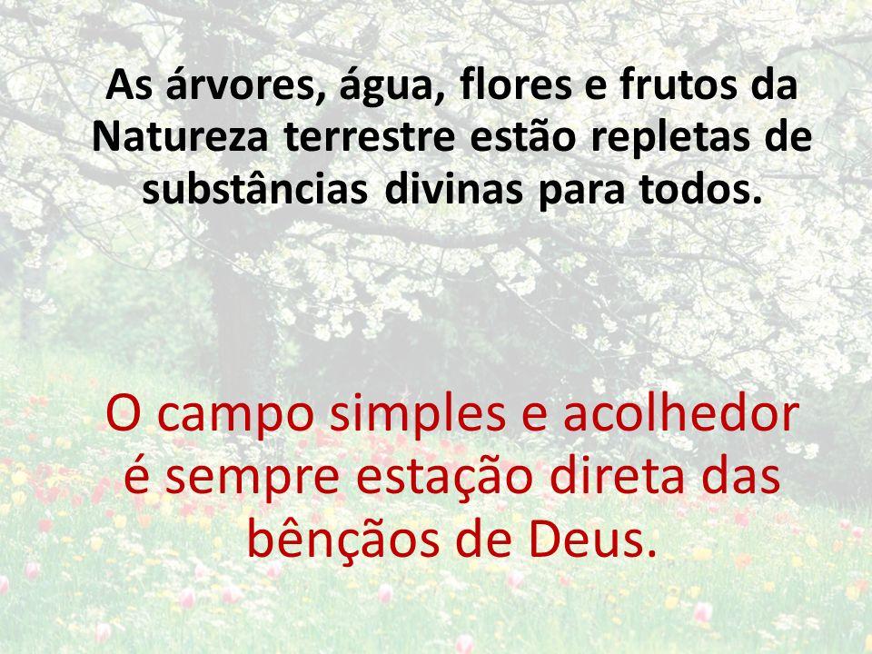 As árvores, água, flores e frutos da Natureza terrestre estão repletas de substâncias divinas para todos.