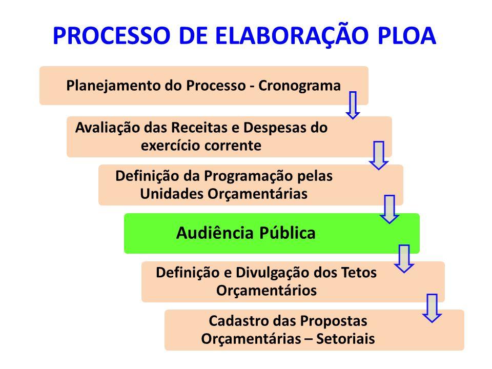 PROCESSO DE ELABORAÇÃO PLOA
