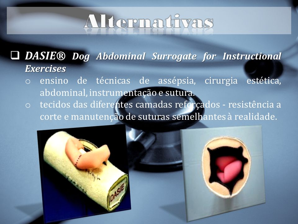 Alternativas DASIE® Dog Abdominal Surrogate for Instructional Exercises.