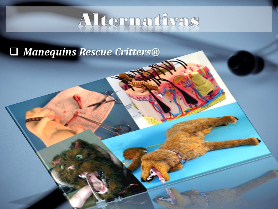 Alternativas Manequins Rescue Critters®
