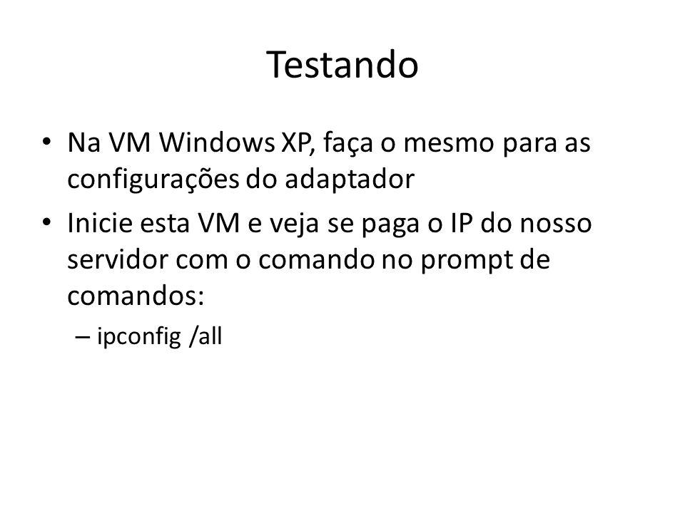 Testando Na VM Windows XP, faça o mesmo para as configurações do adaptador.