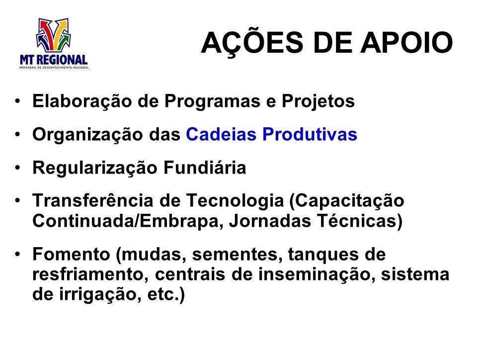 AÇÕES DE APOIO Elaboração de Programas e Projetos