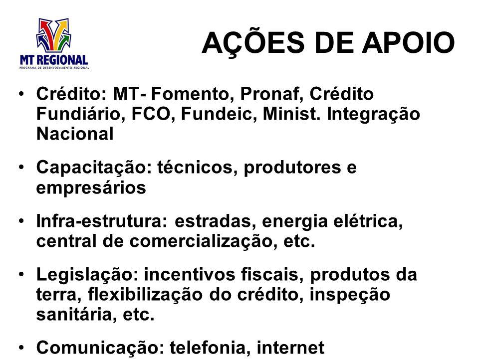 AÇÕES DE APOIO Crédito: MT- Fomento, Pronaf, Crédito Fundiário, FCO, Fundeic, Minist. Integração Nacional.