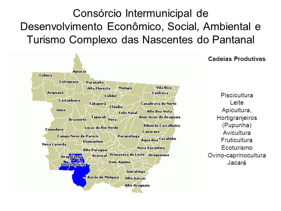Consórcio Intermunicipal de Desenvolvimento Econômico, Social, Ambiental e Turismo Complexo das Nascentes do Pantanal