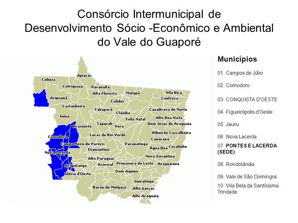Consórcio Intermunicipal de Desenvolvimento Sócio -Econômico e Ambiental do Vale do Guaporé