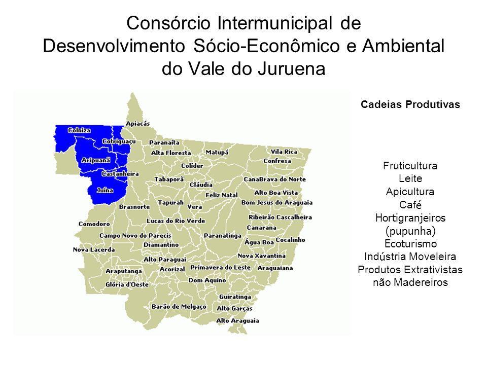 Consórcio Intermunicipal de Desenvolvimento Sócio-Econômico e Ambiental do Vale do Juruena