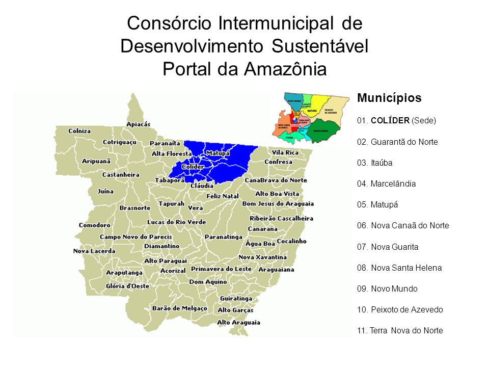 Consórcio Intermunicipal de Desenvolvimento Sustentável Portal da Amazônia