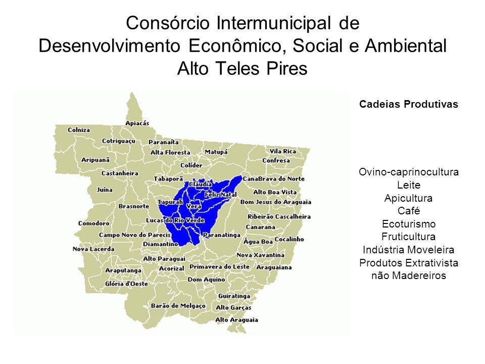 Consórcio Intermunicipal de Desenvolvimento Econômico, Social e Ambiental Alto Teles Pires