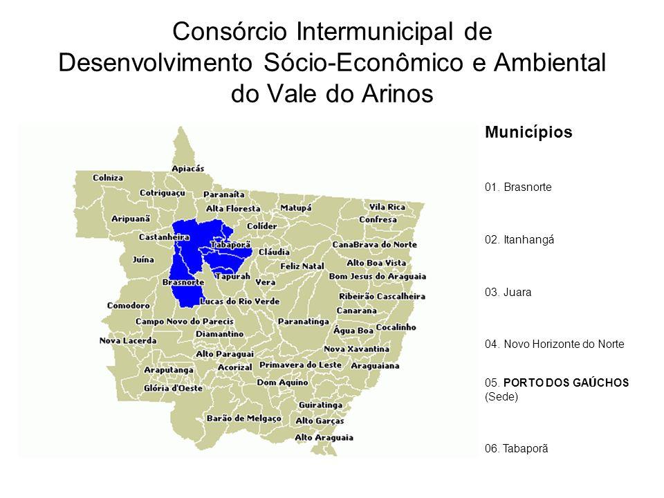 Consórcio Intermunicipal de Desenvolvimento Sócio-Econômico e Ambiental do Vale do Arinos