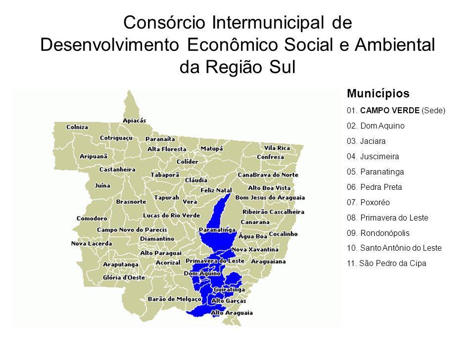 Consórcio Intermunicipal de Desenvolvimento Econômico Social e Ambiental da Região Sul