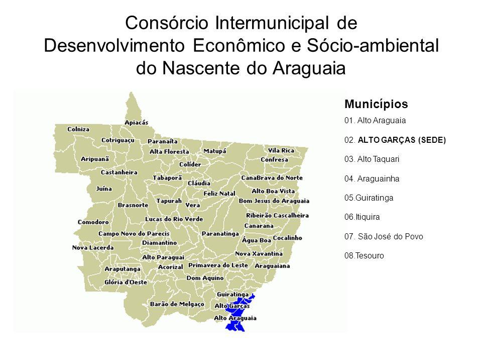 Consórcio Intermunicipal de Desenvolvimento Econômico e Sócio-ambiental do Nascente do Araguaia
