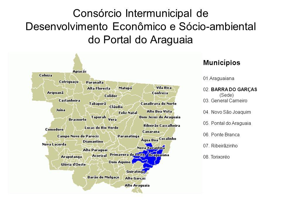 Consórcio Intermunicipal de Desenvolvimento Econômico e Sócio-ambiental do Portal do Araguaia